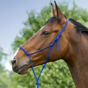 Licol éthologique ou licol en corde polypropylène doux, taille poney, de la marque Norton. Les nœuds peuvent être modifiés pour pouvoir l'ajuster Le licol éthologique est utilisés pour le travail à pied, l'éthologie et d'autres disciplines, comme l' Equifeel, basées sur le travail de confiance grâce à des exercices ludiques entre monture et cavalier, à pied ou monté. Mise en garde : il ne faut pas utiliser pour attacher votre cheval ou lui laisser au champ. Le licol éthologique est fabriqué avec un seul bout de corde. Il n'y a aucun point de rupture possible.