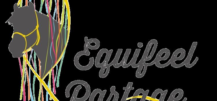 Le Tournoi de l' Association Equifeel Partage